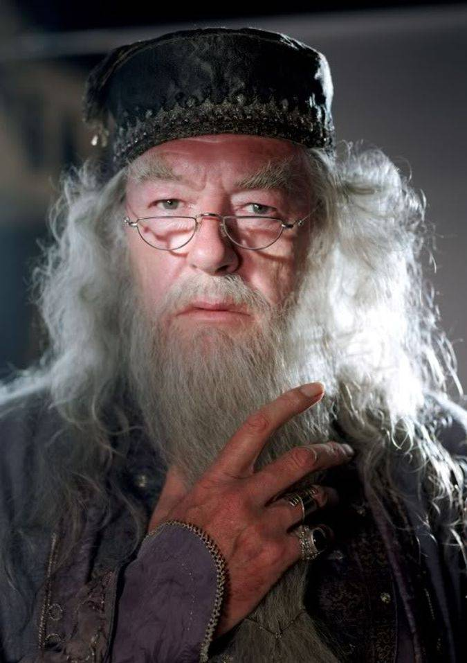 albus dumbledore harry potter
