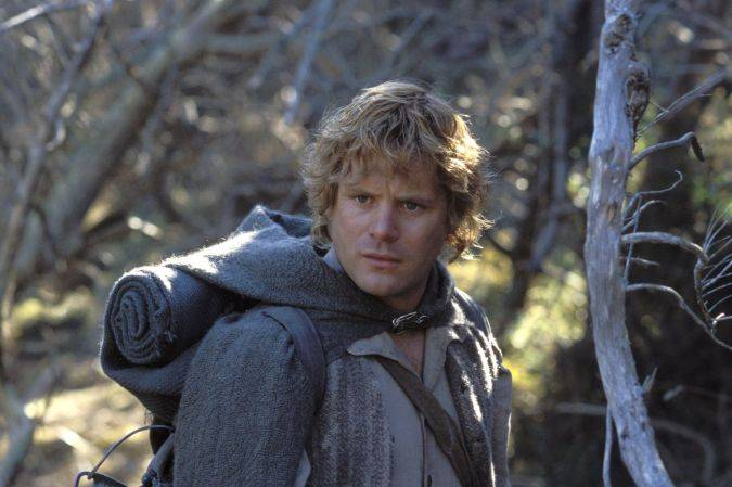 the lord of the rings sean astin stranger things