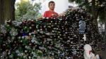 Construyó pared con botellas de vidrio para proteger su 'casa' a cielo abierto - Noticias de envases de vidrio