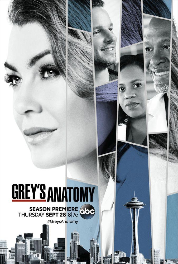 Greys Anatomy 14×23 Ingles Subtitulado 720p