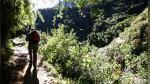 ¿Qué son los bosques modelo? - Noticias de minería informal