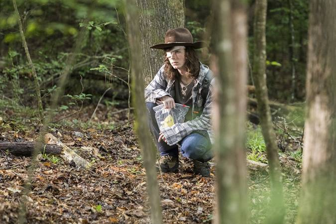 the walking dead carl grimes