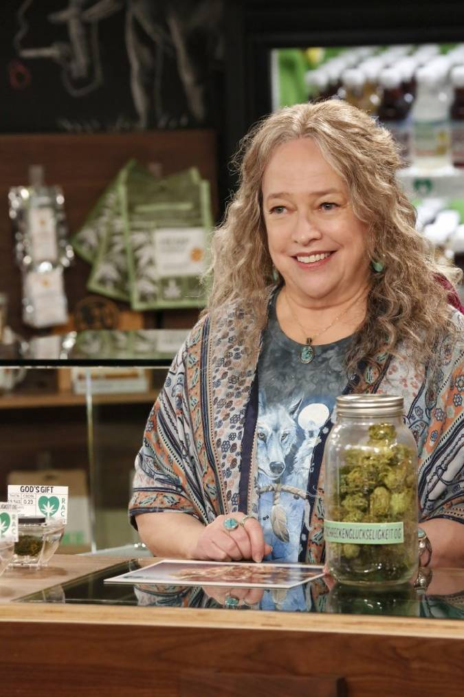 disjointed temporada 2