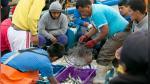 ¿El Niño asoma? Previsiones en la pesca peruana - Noticias de fenómeno la niña costera