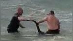 Facebook: Policías salvan a canguro de ahogarse en el mar | VIDEO | FOTOS - Noticias de muere ahogado
