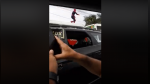 Facebook: 'Spider-Man' aparece saltando carros en Lima - Noticias de heroes of the storm legion championship