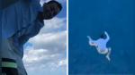 Compañía de cruceros veta de por vida a un joven por saltar de la cubierta al mar - Noticias de instagram