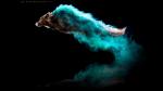 Fotógrafa cubrió a perros con polvo de colores y lo que su cámara captó fue mágico - Noticias de fotos virales