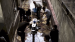 "Netflix: plataforma libera detrás de cámaras de ""Roma"" - Noticias de noticias de cine"