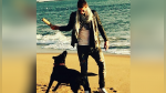 'Nala', la perrita de Emiliano Sala, sigue esperando su regreso y la escena conmueve a todos en Facebook - Noticias de sala luna pizarro