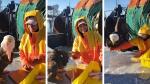 Pescador se hace amigo de águila calva que quiso robarle sus pescados - Noticias de pescador