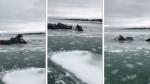 El angustiante rescate de un conductor poco antes de que su camioneta se hunda en río congelado - Noticias de hombre