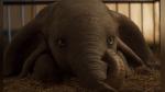 """""""Dumbo"""": el retorno del tierno personaje de Disney tras 78 años - Noticias de premios tu mundo"""