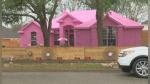 Una casa rosada provoca el enojo de todo un vecindario de Estados Unidos - Noticias de accidente automovilístico