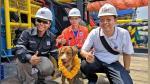 Perro fue visto a 220 km mar adentro y nadie se explica cómo llegó nadando hacia sus rescatistas - Noticias de petróleo