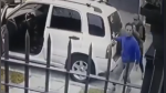 Perros salvan a su dueño de violento robo con arma y se vuelven viral en redes - Noticias de delincuente