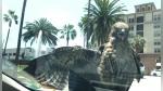 Un halcón se subió a un auto en movimiento y se paseó por las calles de Los Ángeles - Noticias de peru