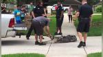 Un cocodrilo noqueó de un cabezazo al especialista que trajeron para capturarlo - Noticias de youtube viral