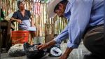 Nucú, la hormiga comestible que se atrapa en la época de lluvias en México - Noticias de reciclar