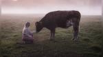 Ancestral forma de llamar al ganado cautiva al Internet - Noticias de arte
