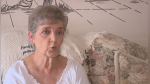 Controversia por caso de mujer de 79 años condenada a prisión por alimentar a gatos callejeros - Noticias de gatos