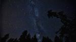 El diminuto insecto que arruinó una grabación de la NASA de una lluvia de estrellas - Noticias de arizona