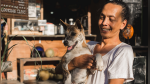 Tener un perro reduce enfermedades del corazón, asegura nuevo estudio - Noticias de actividad física