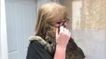 Una mujer encuentra a su gato 11 años después de que se perdiera - Noticias de chips