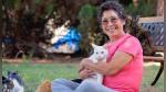¿Cómo es vivir con más de 1,000 gatos? Una mujer lo hizo realidad y comparte su experiencia - Noticias de geek smart house
