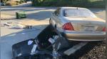 Dejaron a su perro dentro de su auto y terminó protagonizando singular incidente - Noticias de bebé