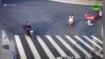 Hombre es arrollado por no respetar señales y un perro le da una 'lección' de civismo segundos después - Noticias de viral