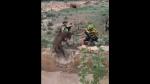 Ciclistas salvan a ciervo a punto de morir ahogado y gesto se vuelve viral en redes - Noticias de ciclista